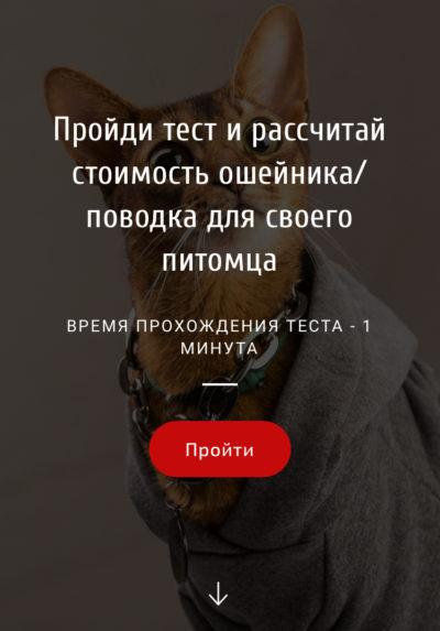Квиз сайт: индивидуальный пошив одежды